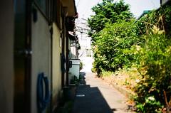 (yasu19_67) Tags: alley sunnyday atmosphere photooftheday film filmism filmphotography analogphotography minoltaα7 minoltaaf50mmf17 50mm shadow osaka japan