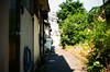 (yasu19_67) Tags: alley sunnyday atmosphere photooftheday film filmism filmphotography analogphotography minoltaα7 minoltaaf50mmf17 50mm shadow osaka japan