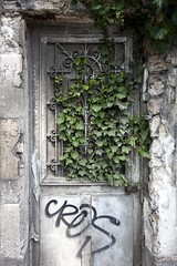 Charles (Gerard Hermand) Tags: 1705238420 gerardhermand france paris canon eos5dmarkii formatportrait melun porte door mur wall feuille leaf nature charlescros tag vieux old lierre ivy