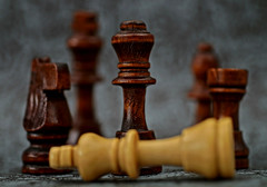 Queen (daria_darek_photography) Tags: queen macro macromondays macromonday king chess fight game monday mondays