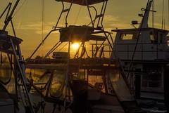 In port.... (Joe Hengel) Tags: inport lewes lewesde lsd lowerslowerdelaware delaware boats sunset sun sunlight summer summertime summersunshine silhouette silhouettes evening eveninglight eveningskies sussexcounty