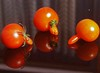 P1014840 (saxonfenken) Tags: 2772misc 2772 two damaged reflection red tomato deformed