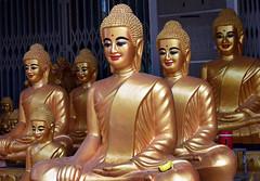 Cambodia (Peter Jennings 23 Million+ views) Tags: cambodia phnom penh siem reap battambang bamboo train ankor wat tapromh tuol sieng killing fields kompong kleng village santuk silk bantey srei temple intrepid sodyka im peter jennings nz auckland tuk pol pot khmer rouge red cambodians year zero us bombs kampuchea kambujadeśa buddha buddhism indiana jones raiders lost ark