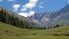 Val di Fumo - Adamello Presanella Alps (ab.130722jvkz) Tags: italy trentino alps easthernalps rhaethianalps adamellopresanellaalps mountains