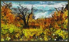 La tristezza dell'Autunno - Luglio-2017 (agostinodascoli) Tags: impressionismo cianciana sicilia nikon nikkor colore fullcolor autunno photoshop photopainting art digitalart paesaggi alberi landscape nature texture