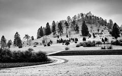 Approaching the Chapel on the Hill... (Ody on the mount) Tags: anlässe em5 highkey kirchen landschaft mzuiko1250 nebel omd olympus salmendingerkapelle schwäbischealb wanderung bw monochrome sw burladingen badenwürttemberg deutschland de