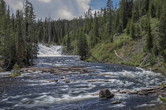Lewis Falls (Yellowstone National Park) (♡✌ Kᵉⁿ Lᵃⁿᵉ ✌♡) Tags: geo:lat=4426793088 geo:lon=11063430905 geotagged unitedstates usa westthumb flowingwater gallatincounty httpsenwikipediaorgwikiyellowstonenationalpark httpswwwnpsgovyell landscape lewisfalls lewisriver lewiswaterfalls nationalpark nationalparkservice np nps parkcounty river southcentralrockies tetoncounty touristattraction travelphotography usnationalpark usnationalparkservice watercourse waterfall whitewater worldsfirstnationalpark wy wyoming yellowstone yellowstonenationalpark yellowstonenp ynp