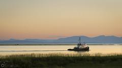 Garry Point Sunset (PiscesDreamer) Tags: tug tugboat fraserriver steveston garrypointpark sunset summer britishcolumbia canada shore richmond mountains