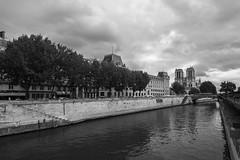 Paris - 10 juillet 2017-3 (bebopeloula) Tags: photorobertcrosnier 2017 europe france iledefrance nikond700 notredame paris uga cathédrale quai
