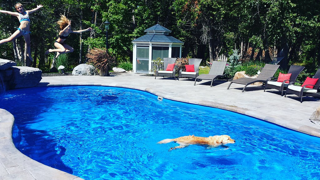 The world 39 s best photos of pooltime flickr hive mind for Best pool buys canada