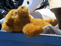 It looks like the end of the line for an old teddy bear. (kennethkonica) Tags: color global random hoosier car truck parkinglots canonpowershot canon vivid midwest marioncounty america usa outdoor indiana indianapolis indy travel trashbin teddybear trash stuffedbear discarded toy brown