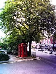 Hampstead Heath Road Tree Outdoors City Walking London Street at Hampstead (michael_essex73) Tags: hampsteadheath road tree outdoors city walking london street