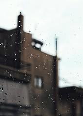 * (PattyK.) Tags: ioannina giannena giannina epirus ipiros balkans hellas ellada greece grecia griechenland rain raindrops whereilive nikond3100 ιωάννινα γιάννενα ελλάδα βαλκάνια βροχή σταγόνεσ europe europeanunion snapseed