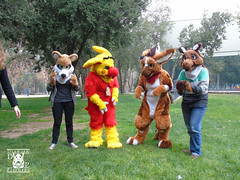 DSC00174 (Thanriu) Tags: fursuit chile meet junta furry santiago friends amigos canid monster avian ave canino monstruo badge angel dragon parrot artic wolf yerik dog