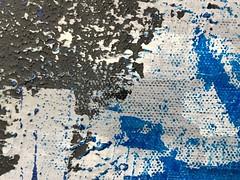 Texture (Giorgio Ghezzi) Tags: macromondays texture memberschoicetexture