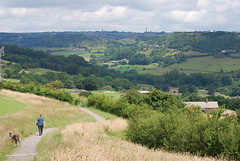Walking the dog ..... (Halliwell_Michael ## Thanks you for your visits #) Tags: calderdale westyorkshire nikond40x 2017 shibdenvalley halifax trees landscapes dogwalker queensbury