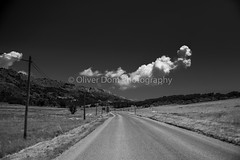 on the road (Oliver Dom Photography) Tags: road roadtrip ontheroad travel traveling travelphotography tree trees street streetphotography cloud clouds cloudscape cloudporn clearsky photo photography ilovephotography ilovelandscapes nikond750 nikon nature nikor nice landscapes lafrance france field landscape landscapephotography landscapelover landscapehunter landscapecaptures longway