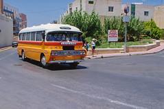 img094-1 Malta Bus DBY 384 Leyland Roadmaster (Lawrence Holmes.) Tags: malta bus dby384 valetta leyland roadmaster scan lawrenceholmes