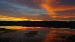 DSC01679 (gregnboutz) Tags: cloud clouds colorfulsunset colorfulsunsets lakesunsets lakesunset sunset sunsets binderlake binderstatepark binderpark lake missourilakes missourilake gregboutz