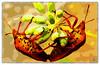 Insekten (reinhard111) Tags: insekten childish paint sammlung bild foto verfremdet