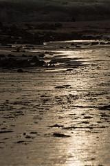 Magique (claude dequidt) Tags: erdeven kerhilio plage sunset
