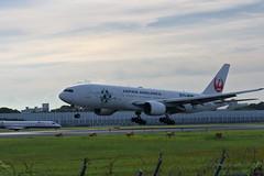 UP3A4537 (ken1_japan) Tags: 大阪国際空港 伊丹空港 itm 伊丹スカイパーク スカイランドハラダ japan osaka airplane ana jal canon 7dmkⅱ ef70200mm f28lisiiusm