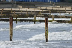 Shanklin Staithes (Elsie esq.) Tags: beach englishchannel shanklin