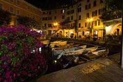 Limone Sul Garda (Michael Franze) Tags: sony sonya6000 a6000 ilce6000 samyang samyang12mm20 12mm 12mm20 landscape landschaft see gebirge gardasee nacht night nature limone sul garda hafen boote