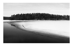 Finland (march '17) (Pietro Bevilacqua) Tags: finland landscape blackandwhite monochrome film filmisnotdead ilford fp4 analogue 35mm pentax k1000 frozen lake snow winter wood tree fineart minimal home develop id11 pellicola finlandia viaggio lago ghiacciato neve bosco foresta minimalismo sviluppo
