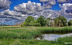 Naturlandschaft (garzer06) Tags: wolken blau weis grün deutschland landschaft naturlandschaft landschaftsbild naturphoto landschaftsfoto naturfoto vorpommernrügen naturphotography naturfotografie mecklenburgvorpommern vorpommern inselrügen wasser schilf insel landscapephotography rügen landschaftsfotografie üselitz
