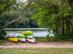 P1070363 (Greenville, NC) Tags: greenville nc north carolina river park recreationparks