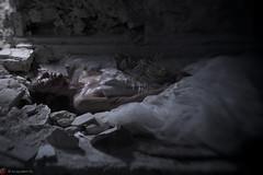 IMG_7587 (m.acqualeni) Tags: manu manuel photo photography belle jolie fille femme robe de mariée blanche sang rouge blood red forêt foreste dark gothique mort dead pleine blonde alternatif alternative décalé sombre blanc dress white zombie walk girl undead