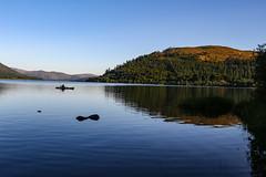 Fisherman (stevehirons) Tags: lakedistrict lake water freshwater blue sky trees nature explore fisherman