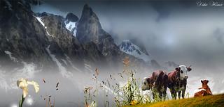 Trio alpin avant l'orage