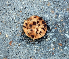 Grounded Chips Ahoy. (dccradio) Tags: lumberton nc northcarolina robesoncounty outside outdoors nikon d40 dslr summer summertime chipsahoy cookie dessert round circle crumbled pavement stones parkinglot ground grounded chocolatechip