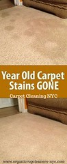 organic carpet cleaning nyc (lisareis47) Tags: organic rug cleaners carpet cleaning nyc new york cleaner
