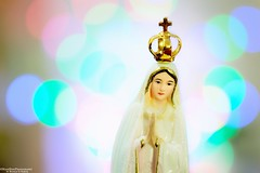 Queen of Heaven and Earth (NadzNidzPhotography) Tags: nadznidzphotography macromondays queen queenofheaven queenofheavenandearth heaven mary holymary fatima religious catholic romancatholic bokeh
