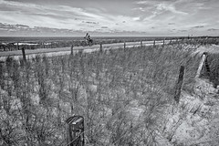 Some Fences For The Friday (Alfred Grupstra) Tags: blackandwhite nature ruralscene outdoors landscape oldfashioned old fence farm sky scenics agriculture field nonurbanscene nopeople retrostyled grass monochrome history summer