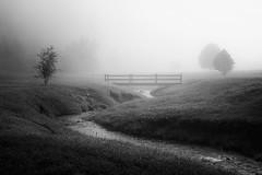 Foggy Mountain Morning Bridge (shutterclick3x) Tags: fog footbridge blackandwhite bw backroads bridge creek moody frankloose