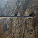 Lobo cruzando uma ponte muito alta