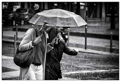 Regenschauer – shower (frodul) Tags: frau mensch person regen regenschauer wetter berlin schirm outdoor bw einfarbig monochrom sw leipzigerstrase passant regenschirm sommer strase deutschland schauer