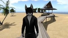 I Shall Darken Your Aura... (Absolutely CraiCrai) Tags: second life emo dark evil mysterious husky