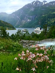 Geiranger (jan_bo) Tags: columbines fjord norway geiranger