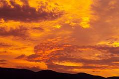 phoenix 火の鳥? (tenugui) Tags: phoenix sunset sky cloud 雲 夕焼け 不死鳥 フェニックス