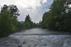 sDSC_3454 (L.Karnas) Tags: slowenien slovenia slovenija sommer summer juli july 2017 gozd martuljek kranjska gora
