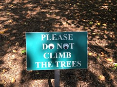 Someone googly-eyed my sign :) (Kristine Paulus) Tags: plantlabel funnysigns googlyeyes bronx nybg treeclimbing newyorkbotanicalgarden plantrecords