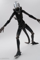 _DSC1000 (ZeroToyz) Tags: alien thedrone エイリアン revoltech 山口式 海洋堂 海洋堂山口式