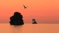 Automne sur le lac Léman (christophebrisseau) Tags: suisse montreux couchédesoleil sunset autumn automne léman lac