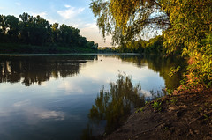 Sunset (Pásztor András) Tags: nature tisza river reflection sky water clouds forest trees leafs landscape 18mm nikkor 1870mm dslr nikon d5100 hungary andras pasztor photography 2017