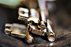 Three Keys HMM (stellagrimsdale) Tags: three keys macro macromondays canon 760d lighting